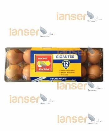 Huevos Gigantes